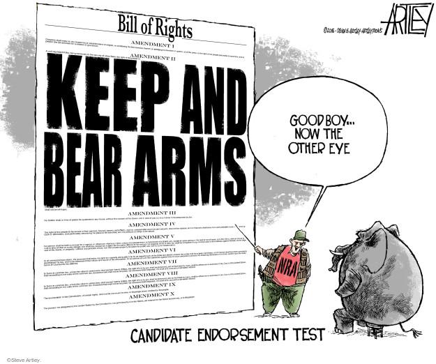 Bill of Rights. Amendment I. Amendment II. Keep and bear arms. Amendment III. Amendment IV. Amendment VI. Amendment VII. Amendment VIII. Amendment IX. Amendment X. Candidate Endorsement Test. Good boy … now the other eye. NRA.