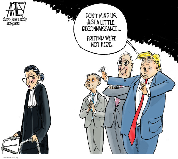 Steve Artley  Steve Artley's Editorial Cartoons 2018-11-08 Supreme Court