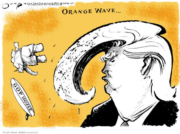 Cartoonist Jack Ohman  Jack Ohman's Editorial Cartoons 2018-11-07 Donald Trump hair