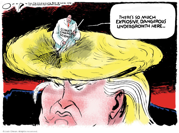 Cartoonist Jack Ohman  Jack Ohman's Editorial Cartoons 2018-11-28 Donald Trump hair