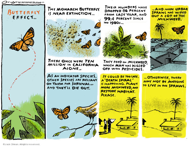 Butterfly Effect … The Monarch butterfly is near extinction … Their numbers have dropped 86 percent from last year, and 99.4 percent since the 1980s … and more urban sprawl has wiped out a lot of the milkweed. As an indicator species, other species are reliant on them for survival ... and theyll die out. It could be too late. A death spiral is happening. Plant more milkweed, and restore habitat please ... otherwise, there may not be anyone to live in the sprawl.
