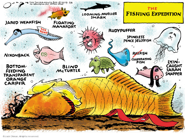 The Fishing Expedition. Jared Weakfish. Floating Manafort. Looming Mueller Shark. For rent. Rudypuffer. Spineless Pence Jellyfish. Ratfish. Cooperating Fish. Lyin-Caught Sarah Snapper. Blind McTurtle. Nixonback. Bottom-Feeding Transparent Orange Carper.