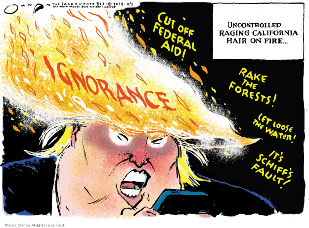 Cartoonist Jack Ohman  Jack Ohman's Editorial Cartoons 2019-11-05 Donald Trump