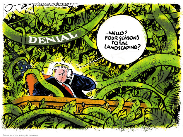 Jack Ohman  Jack Ohman's Editorial Cartoons 2020-11-12 Donald