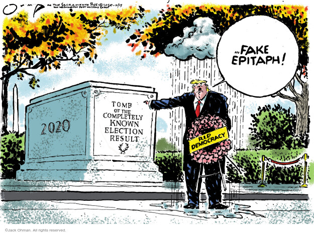 Jack Ohman  Jack Ohman's Editorial Cartoons 2020-11-13 Donald