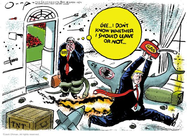 Jack Ohman  Jack Ohman's Editorial Cartoons 2020-12-11 Donald Trump Lawyers