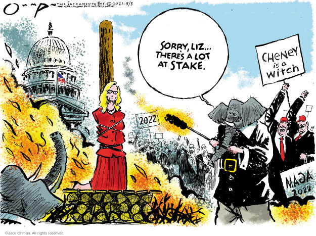Jack Ohman  Jack Ohman's Editorial Cartoons 2021-05-05 political party