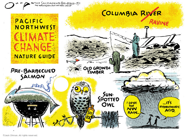Jack Ohman  Jack Ohman's Editorial Cartoons 2021-07-01 100