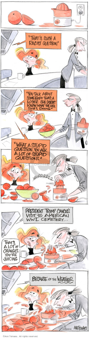 Comic Strip Ann Telnaes  Ann Telnaes Cartoons 2018-11-12 such