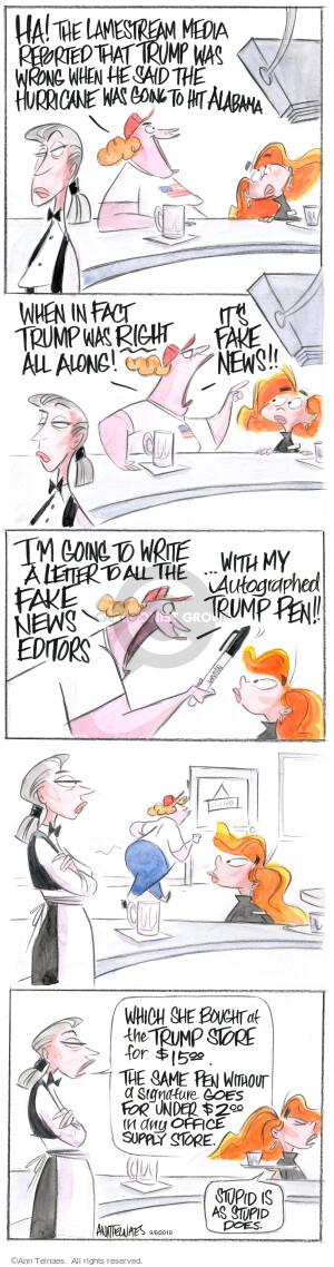 Comic Strip Ann Telnaes  Ann Telnaes Cartoons 2019-09-09 Presidency