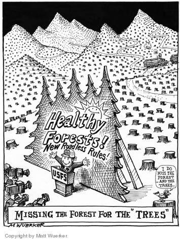 Matt Wuerker  Matt Wuerker's Editorial Cartoons 2004-10-28 forest