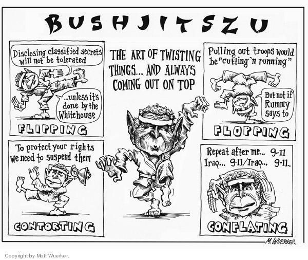 Cartoonist Matt Wuerker  Matt Wuerker's Editorial Cartoons 2006-06-20 executive authority