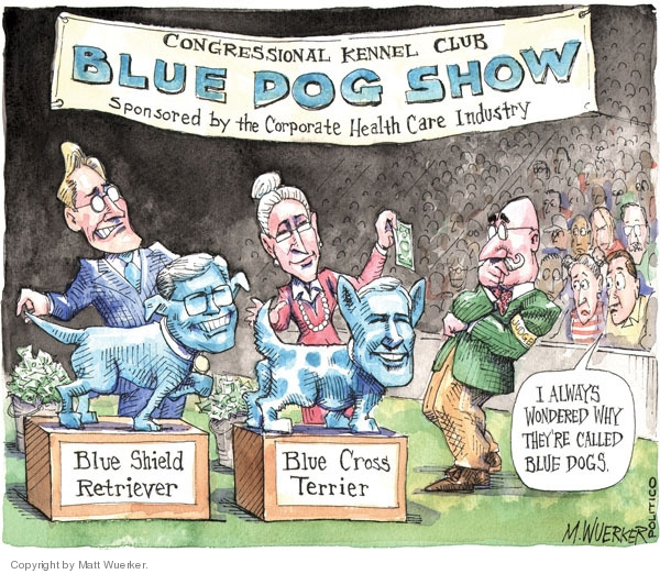 Matt Wuerker  Matt Wuerker's Editorial Cartoons 2009-09-29 campaign contributions democrats
