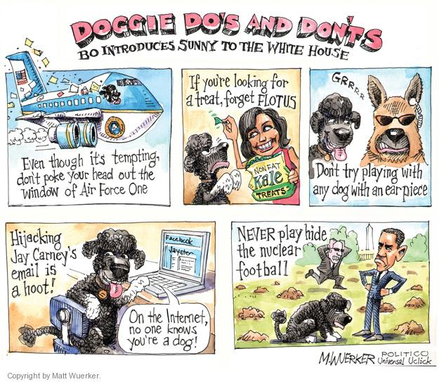Doggie Dos and Donts.  Bo Introduces Sunny to the White House.  Even though its tempting, dont poke your head out the window of Air Force One.  If youre looking for a treat, forget FLOTUS.  Non-fat Kale Treats.  Grrrr.  Dont try playing with any dog with an earpiece.  Hijacking Jay Carneys emial is a hoot!  Facebook Jayster.  On the internet no one knows youre a dog! NEVER play hide the nuclear football.