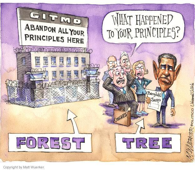 Matt Wuerker  Matt Wuerker's Editorial Cartoons 2014-06-10 forest