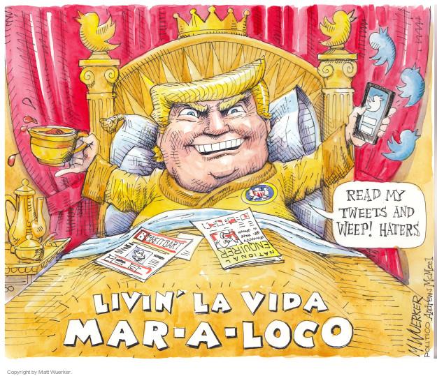 Matt Wuerker  Matt Wuerker's Editorial Cartoons 2017-03-06 Presidency