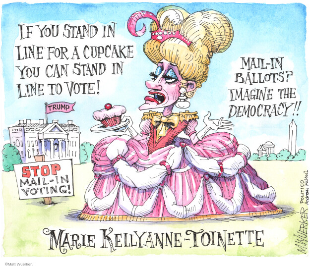 Matt Wuerker  Matt Wuerker's Editorial Cartoons 2020-05-28 voter