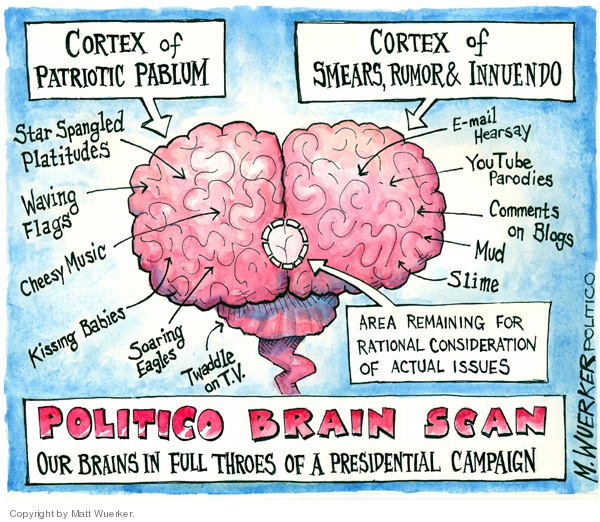 Cortex of Patriotic Pablum.  Star spangled platitudes. Waving flags.  Cheesy music.  Kissing babies.  Soaring eagles.  Twaddle on TV.  Cortex of Smears, Rumor and Innuendo.  E-mail hearsay.  YouTube parodies.  Comments on blogs.  Mud.  Slime.  Area remaining for rational consideration of actual issues.  Politico Brain Scan.  Our brains in full throes of a presidential campaign.