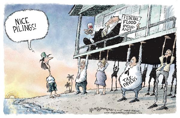 Nick Anderson  Nick Anderson's Editorial Cartoons 2005-12-06 insurance