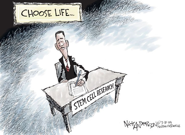 Cartoonist Nick Anderson  Nick Anderson's Editorial Cartoons 2009-03-10 choice