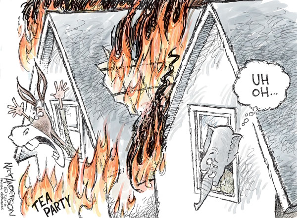 Cartoonist Nick Anderson  Nick Anderson's Editorial Cartoons 2010-07-21 republican politician