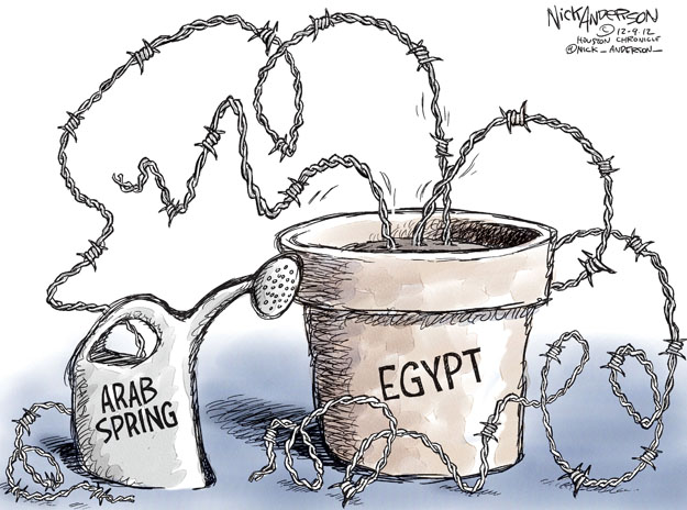 Nick Anderson  Nick Anderson's Editorial Cartoons 2012-12-09 Middle East