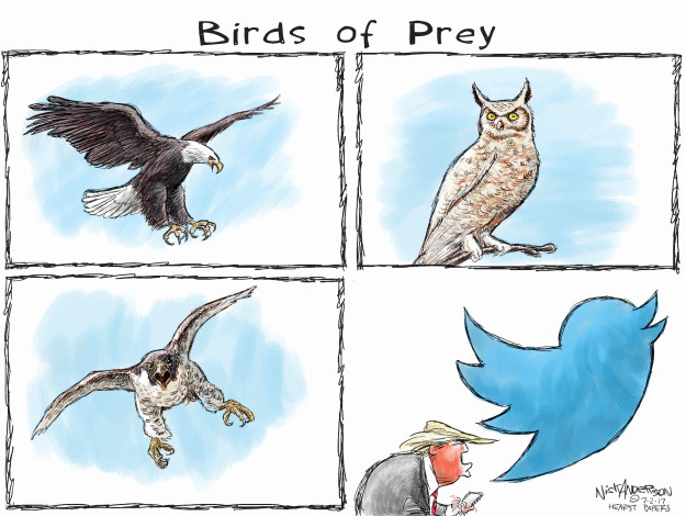 Birds of Prey.
