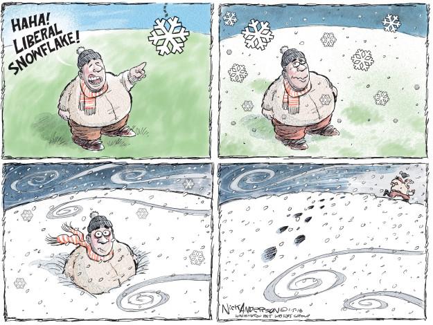 Cartoonist Nick Anderson  Nick Anderson's Editorial Cartoons 2018-01-05 storm