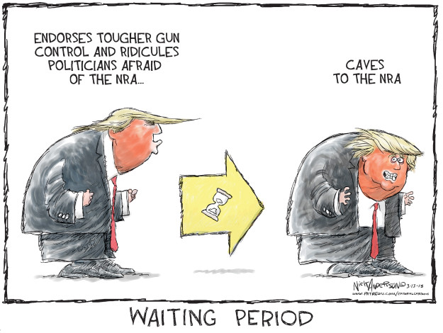 Cartoonist Nick Anderson  Nick Anderson's Editorial Cartoons 2018-03-13 semi-automatic weapon