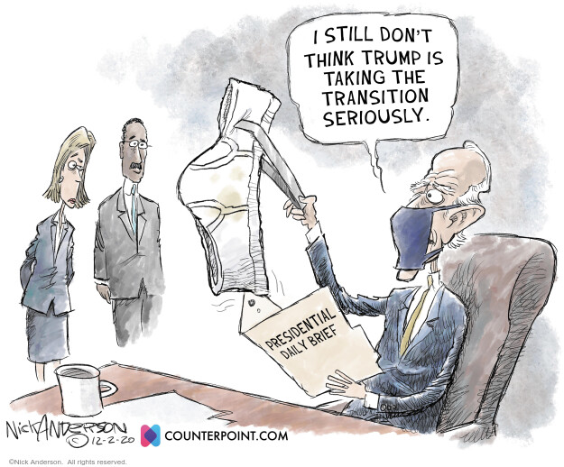 Nick Anderson  Nick Anderson's Editorial Cartoons 2020-12-03 democratic