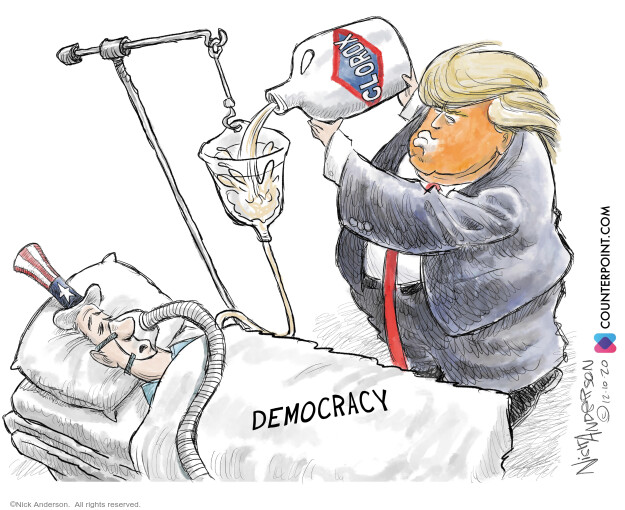 Nick Anderson  Nick Anderson's Editorial Cartoons 2020-12-11 democracy