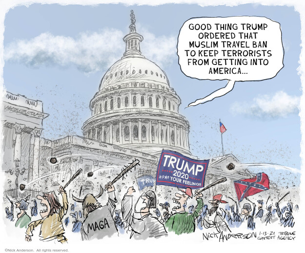Nick Anderson  Nick Anderson's Editorial Cartoons 2021-01-13 2020 election Donald Trump