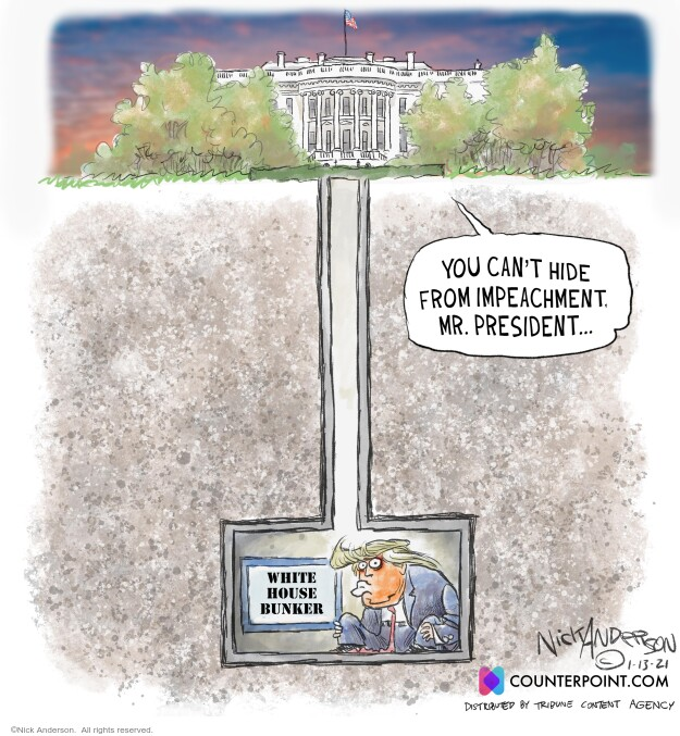 Nick Anderson  Nick Anderson's Editorial Cartoons 2021-01-14 president