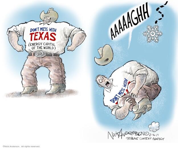 Nick Anderson  Nick Anderson's Editorial Cartoons 2021-02-16 energy