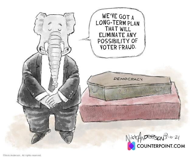 Nick Anderson  Nick Anderson's Editorial Cartoons 2021-05-10 voter fraud