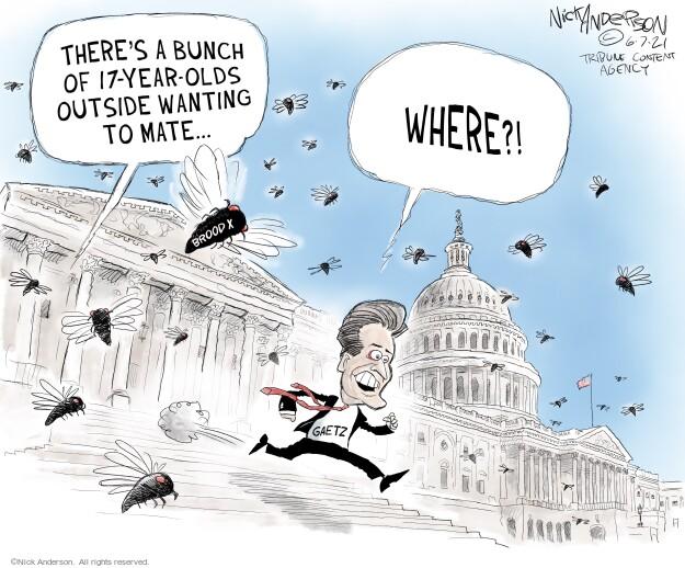 Nick Anderson  Nick Anderson's Editorial Cartoons 2021-06-08 congressional
