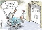 Cartoonist Nick Anderson  Nick Anderson's Editorial Cartoons 2014-02-13 insurance policy