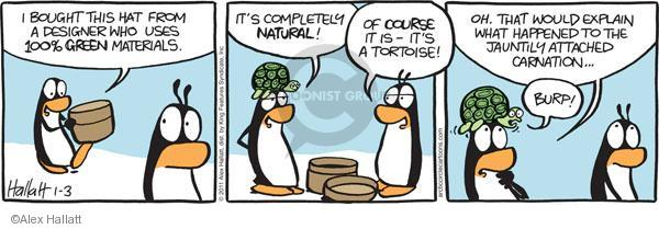 I bought this hat from a designer who uses 100% green materials. Its completely natural! Of course it is - its a tortoise! Oh. That would explain what happened to the jauntily attached carnation … Burp!
