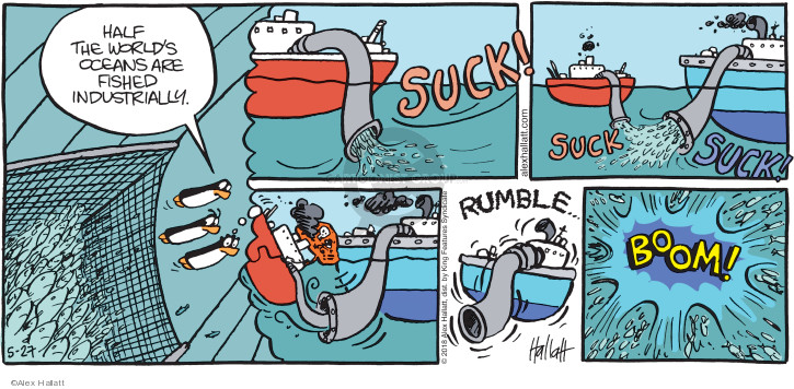 Half the worlds oceans are fished industrially. Suck! Suck. Suck! Rumble … Boom!