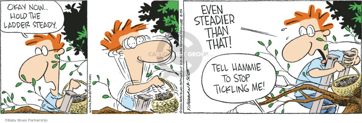 Okay now … hold the ladder steady.  Even steadier than that!  Tell Hammie to stop tickling me! (This cartoon was originally published on 2010-08-13).