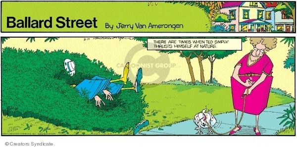 Comic Strip Jerry Van Amerongen  Ballard Street 2007-08-19 natural