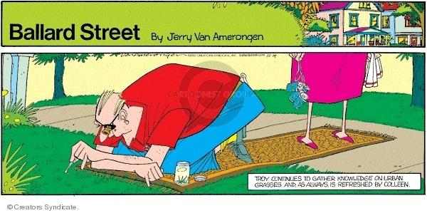 Comic Strip Jerry Van Amerongen  Ballard Street 2007-10-14 marriage