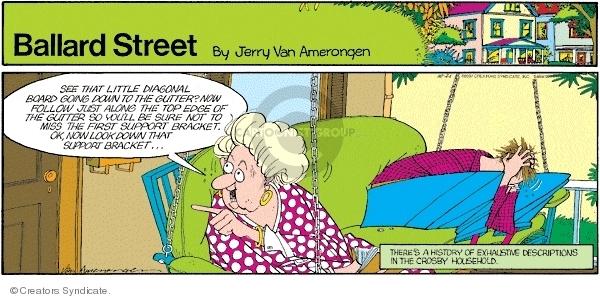 Comic Strip Jerry Van Amerongen  Ballard Street 2007-10-21 first marriage