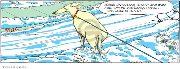 Comic Strip Jerry Van Amerongen  Ballard Street 2008-03-16 dog