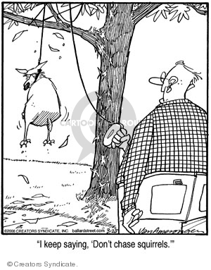 Comic Strip Jerry Van Amerongen  Ballard Street 2008-03-20 squirrel