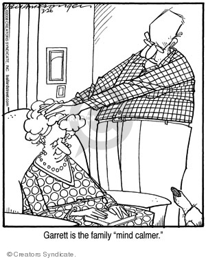 Comic Strip Jerry Van Amerongen  Ballard Street 2008-03-26 family