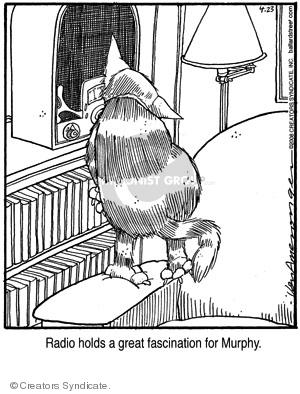 Comic Strip Jerry Van Amerongen  Ballard Street 2008-04-23 cat
