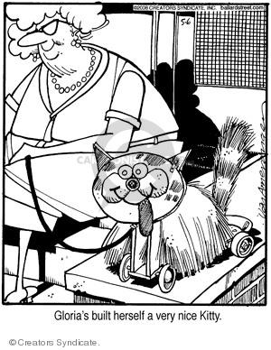 Comic Strip Jerry Van Amerongen  Ballard Street 2008-05-06 cat
