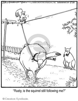 Comic Strip Jerry Van Amerongen  Ballard Street 2008-05-30 canine