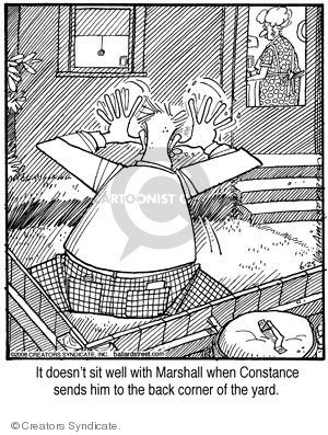 Comic Strip Jerry Van Amerongen  Ballard Street 2008-06-25 send